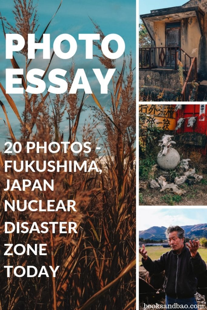 Photos Fukushima Nuclear Disaster Zone