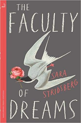 The Faculty of Dreams Review
