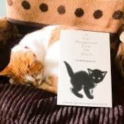 Japan and Cats Books