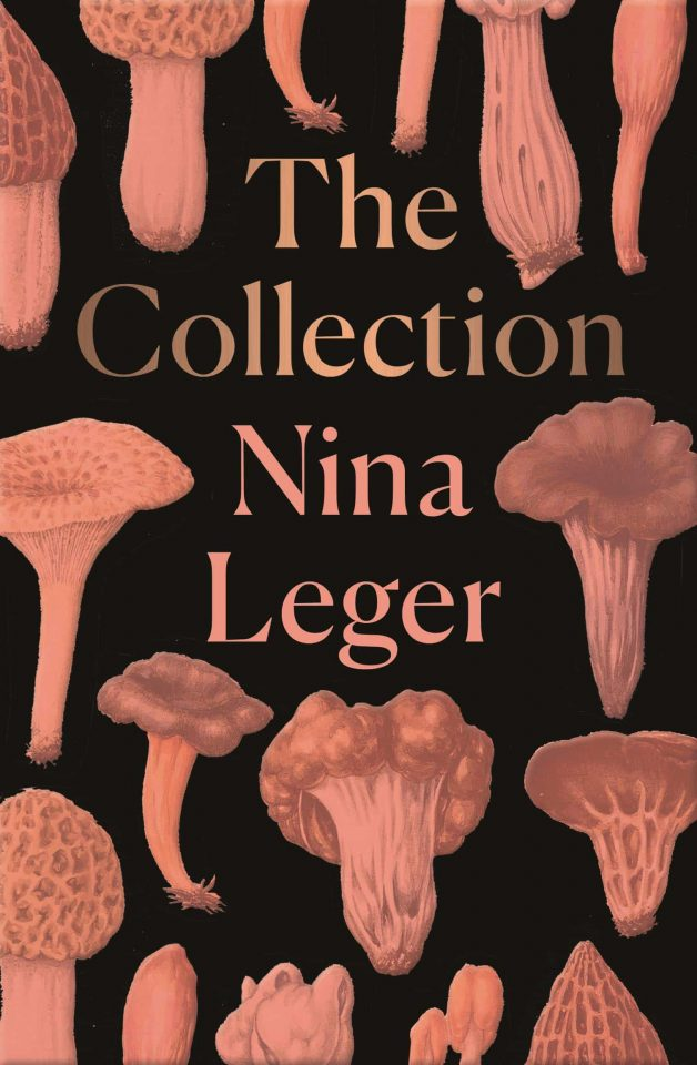 the collection nina leger