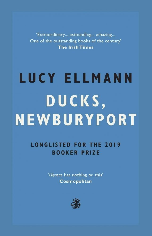 ducks-newburyport