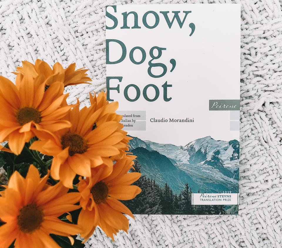 snow dog foot