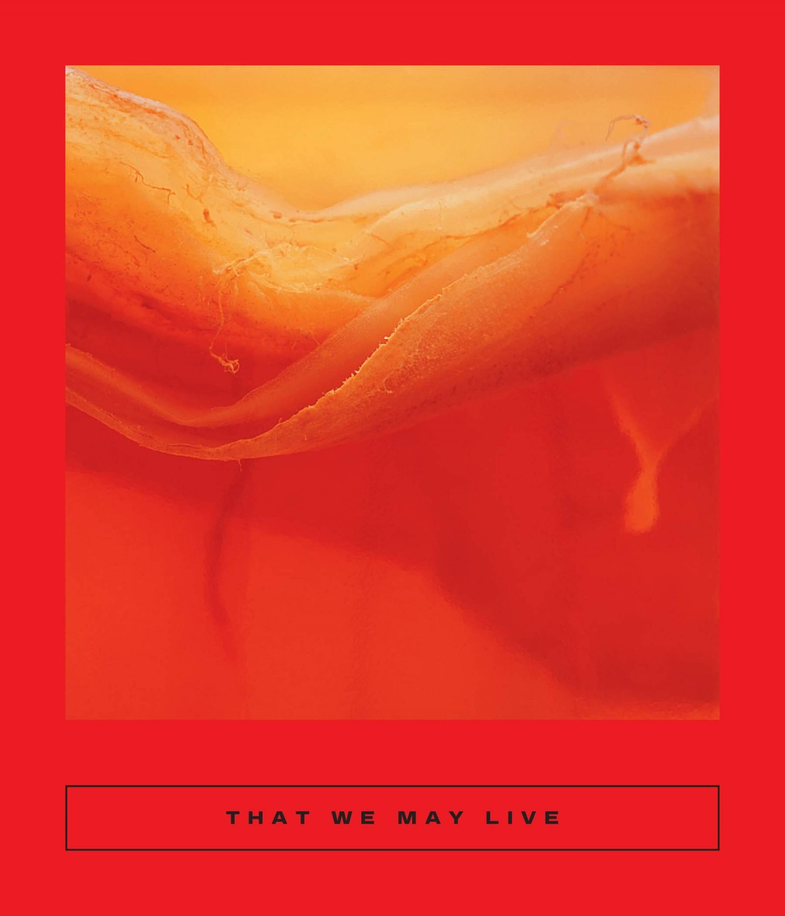 that we may live