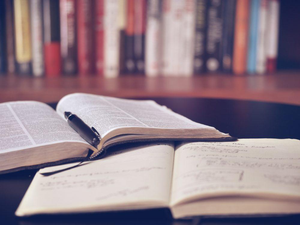 book blogging advice