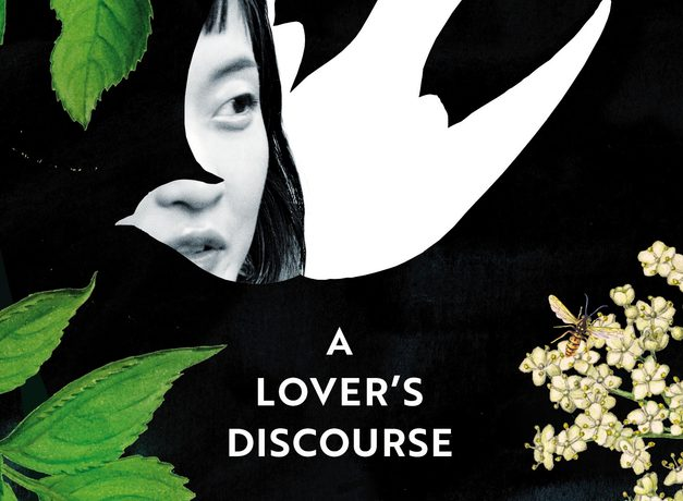 a lover's discourse xiaolu guo
