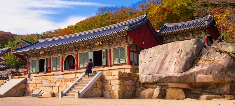 health and wellness south korea