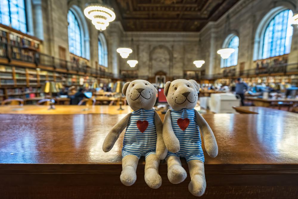 diverse bookstores new york city