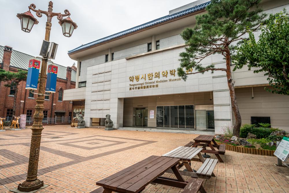 Daegu Yangnyeongsi oriental medicine museum