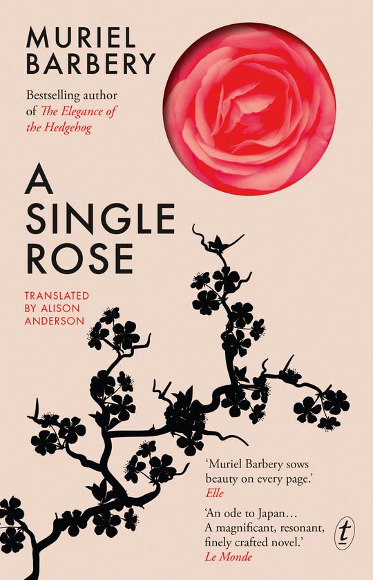 a single rose muriel barbery